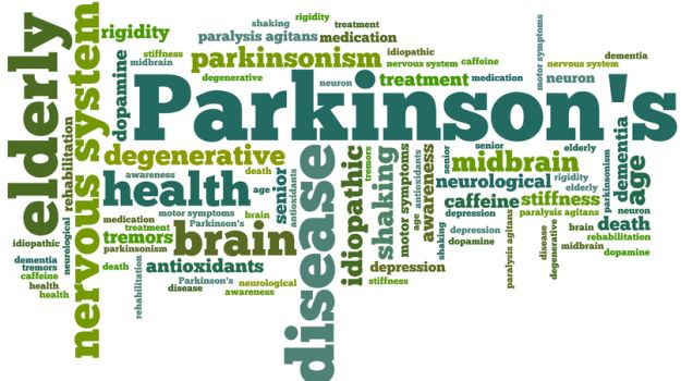 nutritional complement may want to improve Parkinson's remedy