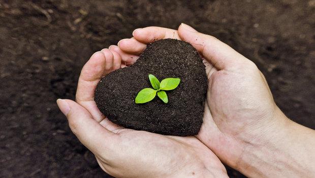 6 Basic Methods of Organic Farming