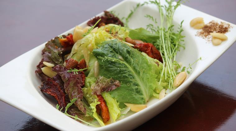 Damaged salad contains Salmonella bacteria