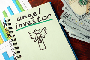 Indian Angel Network plans investment in around 150 startups