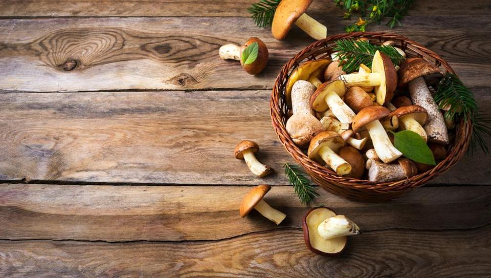 Benefits of mushrooms, 5 reasons why you must include this superfood in your diet