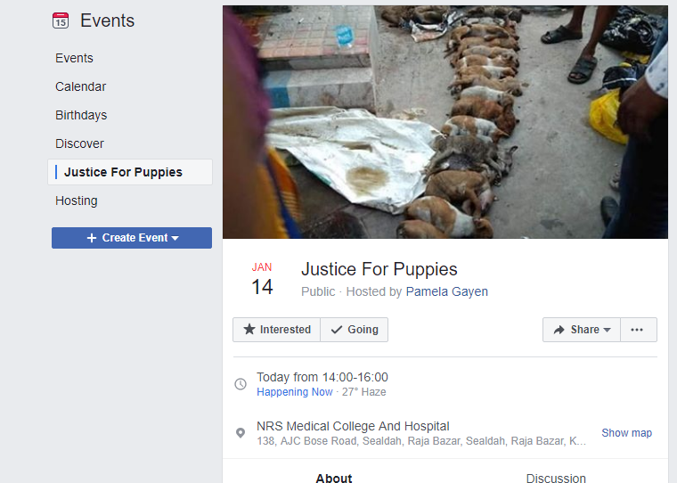 Finally, Justice Served: 2 Nursing Students Arrested For Beating 16 Puppies To Death In Kolkata